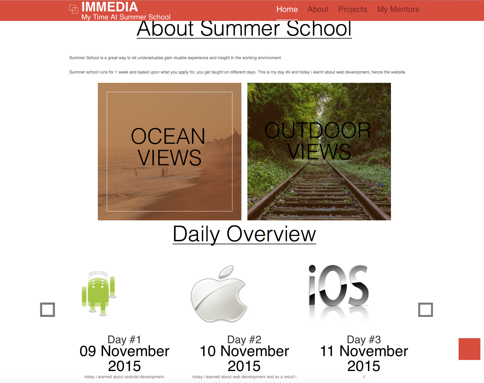 Dominique Summer School website